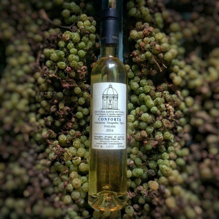 Conforta Late harvest Igt botritis dessert wine. Semillon, Gewurtztraminer, Incrocio Manzoni